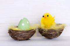 One Green Easter Egg And Yellow Chick In Nest Stock Photos