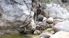 Stream in  mountains during low water periods Stock Footage