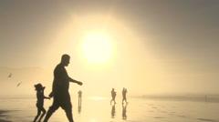 Sunny Beach Life Silhouettes Stock Footage