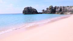 Bermuda Pink Sand Beach Longtail Bird Stock Footage