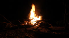 Big fire at night Stock Footage
