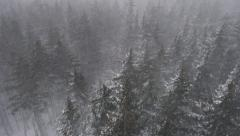 Winter Aerial Howling Blizzard Snowstorm Rising Above Trees Stock Footage