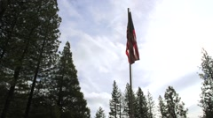 American Flag Forest Timelapse - stock footage