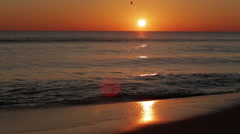 Morning Waves Stock Footage