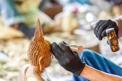 Hand of carver carving wood - stock photo