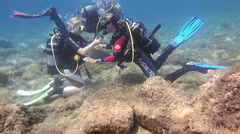Learning to Scuba dive Stock Footage