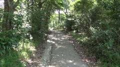Travel down a lush green leafy concrete path Stock Footage
