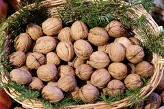 Wallnut in the basket Stock Photos