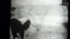 Depression era home movies, children wrestling in snow Stock Footage