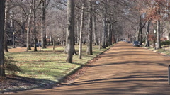 Treelined streets define a wealthy neighborhood in St. Louis, Missouri. Stock Footage