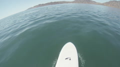 Gray Whale and Paddleboarder 60p Stock Footage