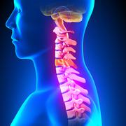 C5 Disc - Cervical Spine Stock Photos