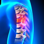 T5 Disc - Thoracic Spine Anatomy - stock photo