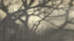 Tree shadow on the grey Wall Stock Footage