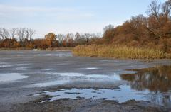 Drained pond - stock photo
