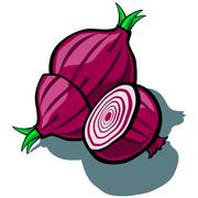 Red Onion and Slice Stock Illustration