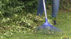 Woman raking lawn Stock Footage