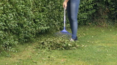 Raking up hedge clippings Stock Footage