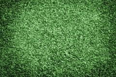 Healthy Grass Texture Stock Photos