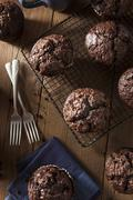 Homemade Dark Chocolate Muffins - stock photo