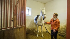 Person feeding white horse with carrot Stock Footage