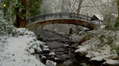 Stock Video Footage of View of arch bridge over creek during winter, Ashland