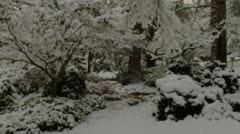 View of Lithia park during winter in Ashland - stock footage