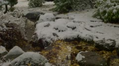 View of creek during winter in Lithia Park, Ashland Stock Footage