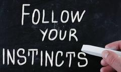 Stock Photo of follow your instincts
