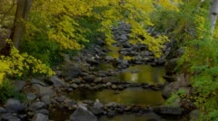 View of creek in Lithia Park, Ashland Stock Footage