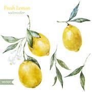 Lemon pattern Stock Illustration