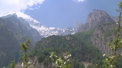 Snowy mountains and flowers at Gangotri in Uttarakhand, India Stock Footage