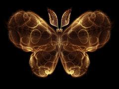 Illusion of Butterfly - stock illustration