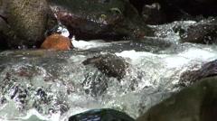 Amicalola fall in dawsonville Georgia USA Stock Footage
