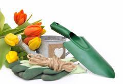 seasonal gardening - stock photo