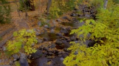 Stock Video Footage of View of creek during autumn in Lithia Park, Ashland