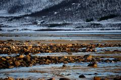 Majestic long rocky shoreline at low tide with snowy mountain in background Stock Photos