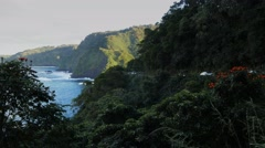 road to hana traffic - stock footage