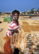 NEGOMBO, SRI LANKA - DECEMBER 31: Unidentified fisherman among dried fish on  - stock photo