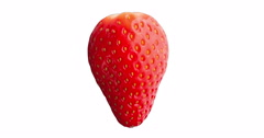 Red Strawberry Fruit on White Background Stock Footage