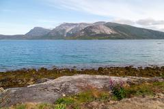 fjord in norway - stock photo
