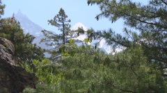 Trees and mountains in the valley at Gangotri in Uttarakhand, India Stock Footage