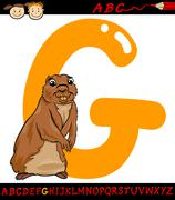 letter g for gopher cartoon illustration - stock illustration