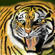 Tiger Piirros