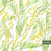 Mimosa pattern - stock illustration