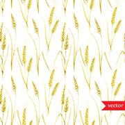 Wheat pattern - stock illustration