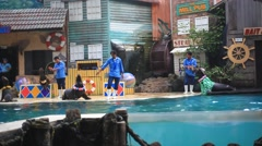 THAILAND, BANGKOK AUGUST 5, 2014. Seals show with participation of the people Stock Footage