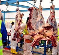 Carcass meat hanging hook Stock Photos