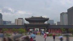Stock Video Footage of Timelapse crowd people umbrella visit famous Seoul royal place main gate daytime