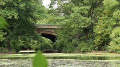 Prospect Park 19th Century Bridge Close Stock Footage